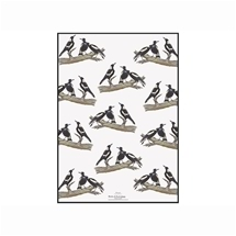 Ashdene Birds of Australia Magpie Kitchen Towel
