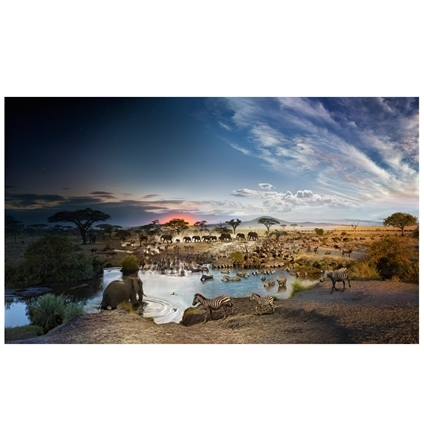 Stephen Wilkes Day to Night Serengeti National Park Puzzle 1000pc